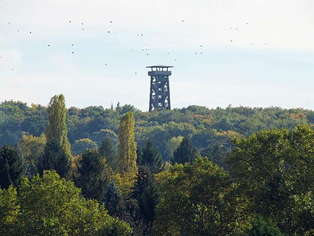 Goetheturm Foto: Dontworry